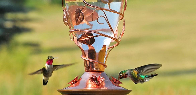 Los bebederos para colibríes más bonitos para tener en casa - diseno-sin-titulo-70-2