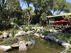 Rincones de Japón que puedes conocer en México