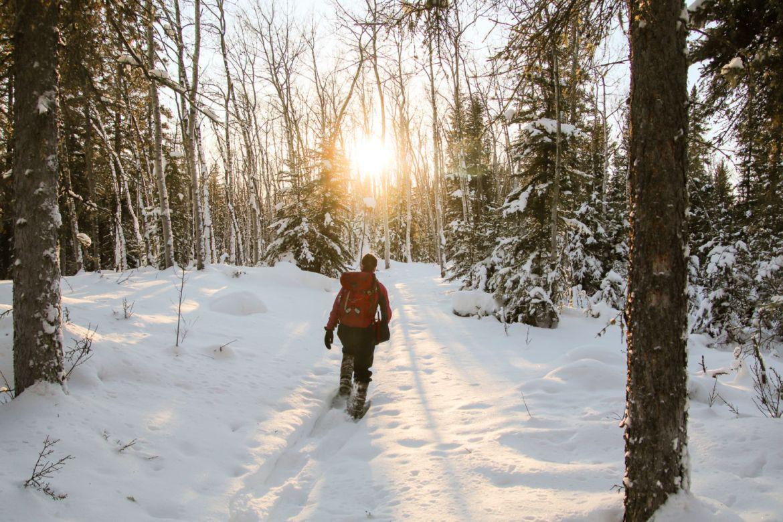Conoce el mejor lugar para ver auroras boreales en Canadá - nick-fitzhardinge