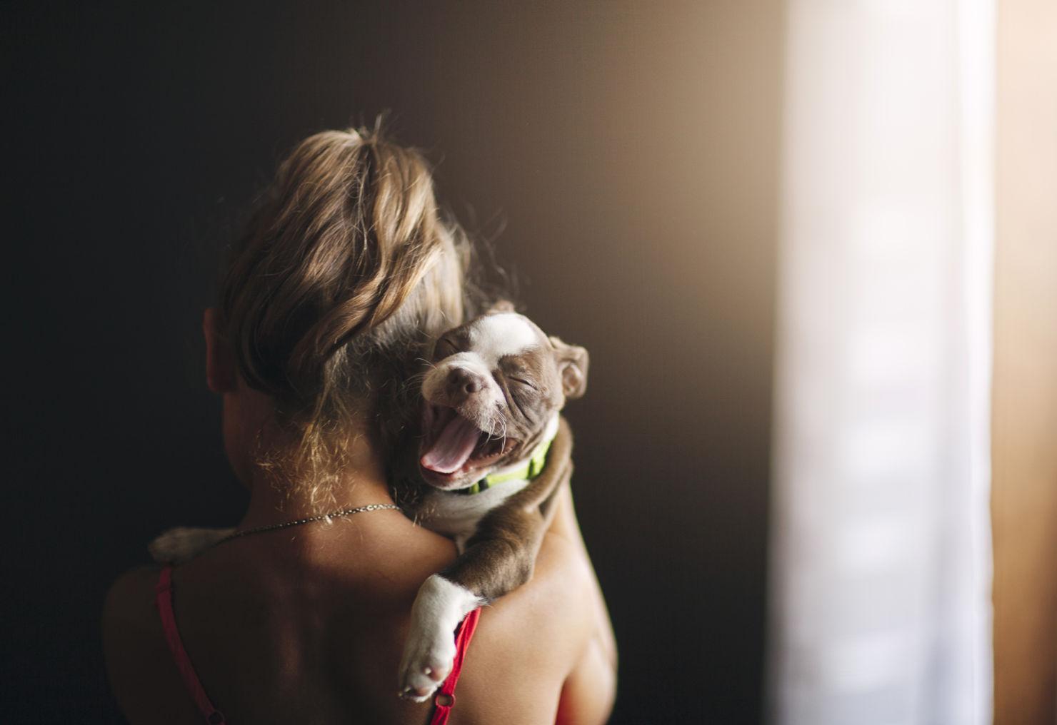 5 cosas que puedes hacer todos los días para hacer a tu perro el más feliz