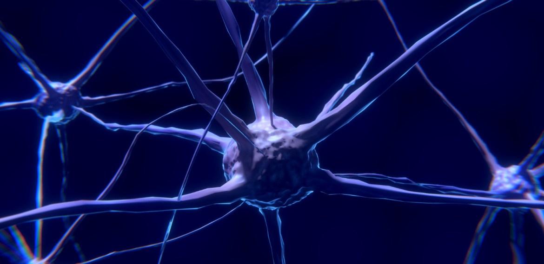 Rutina para activar a tu cerebro ¡No solo necesitas la del gym! - sabrina-17