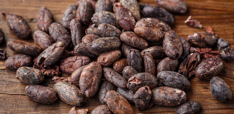 Conoce la ruta del cacao  ¡A descubrir nuestro país! - sabrina-20