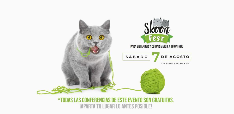 Skoon Fest - sabrina-2021-08-04t093157174