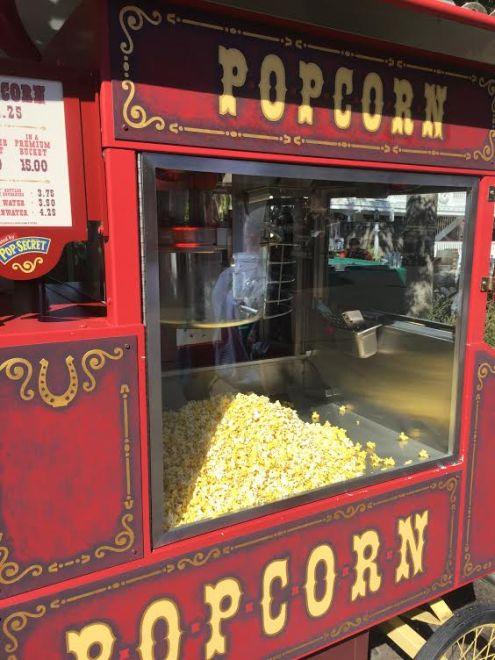 Disneyland popcorn and our top treat picks at the park.