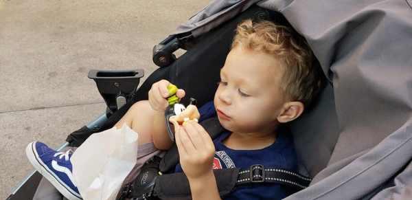 Toddler naps at Disneyland