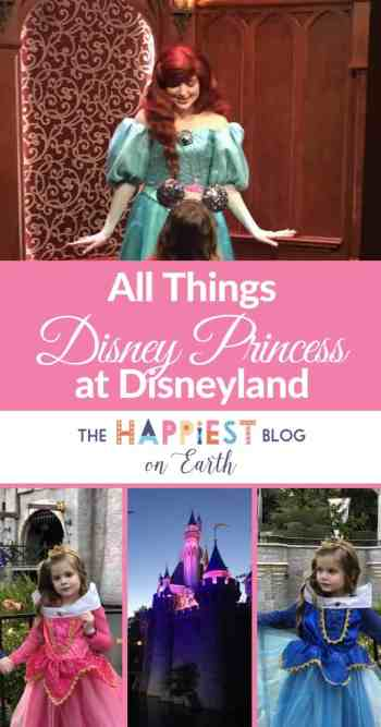 Disneyland Princess