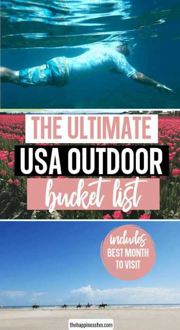 snorkeling in maui, pink tulip field in maui, horseback riding on the beach in texas