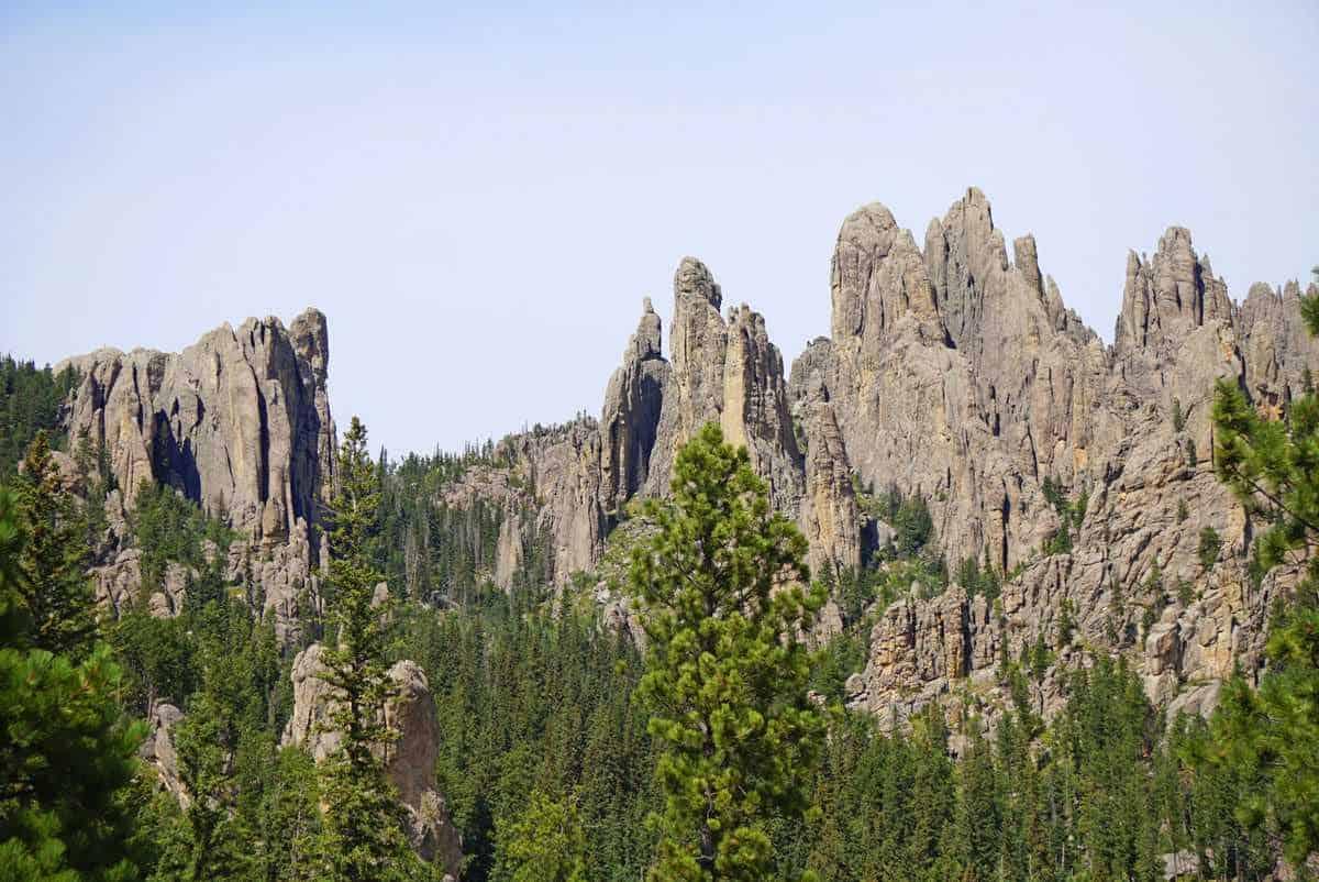 custer-state-park-south-dakota-needles-highway