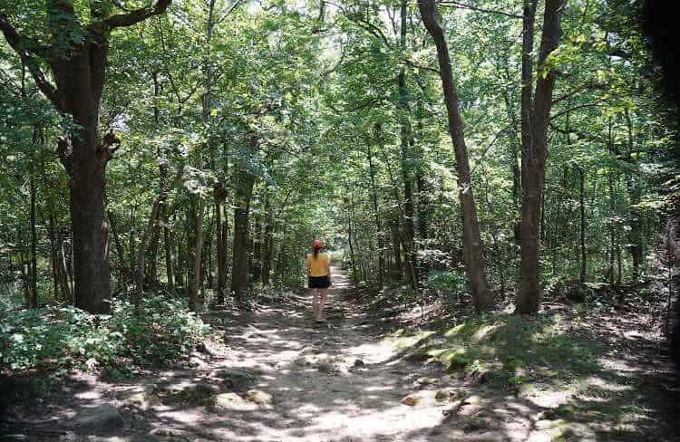 turkey-mountain-hiking-trail-tulsa