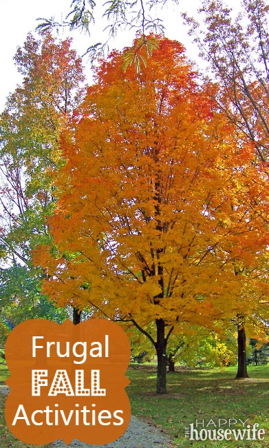 Frugal_Fall_Activities