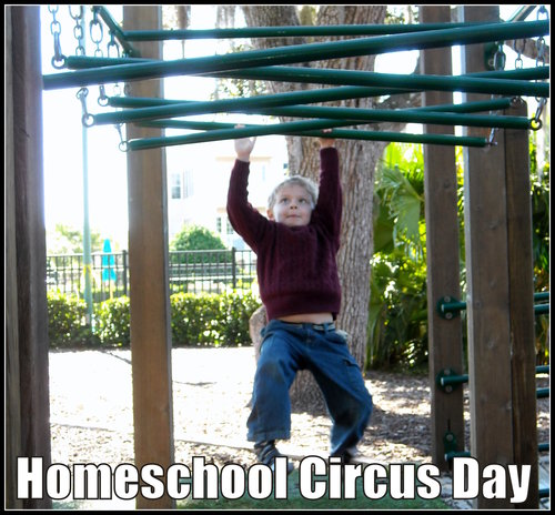 homeschool circus day