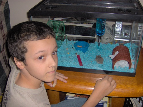 My son and his hamster.