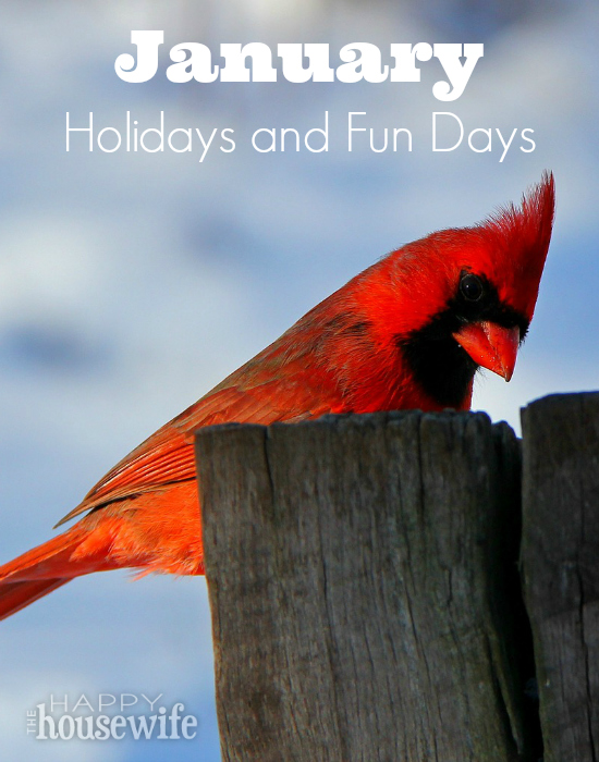 Ways to enjoy January holidays and fun days with your kids - The Happy Housewife