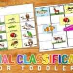 Free animal classification printable. Get science started early with this fun activity.