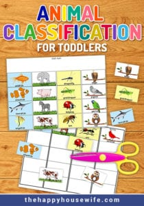 animal classifcation worksheet for toddlers