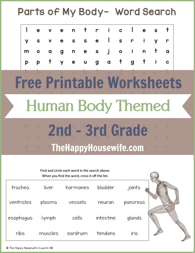 Free Printable Human Body Themed Worksheets for 2nd - 3rd Graders. Includes math and language arts activities. | The Happy Housewife
