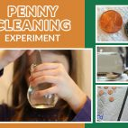 Penny Cleaning Experiment