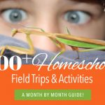 Homeschool Field Trips and activities