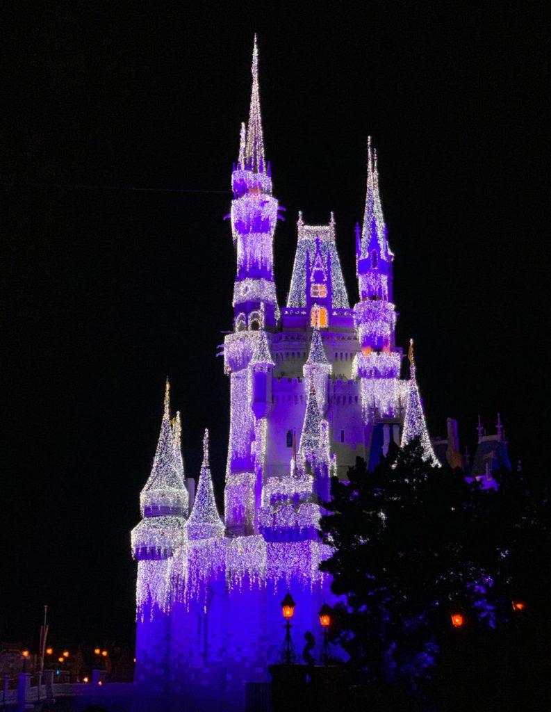 Magic Kingdom at Christmas