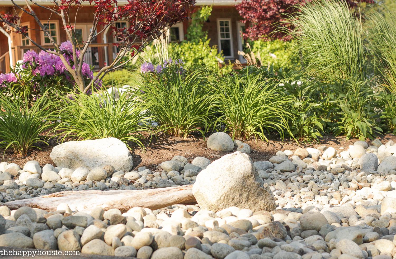 dry river rock garden ideas