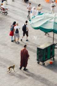 Affen Bändiger Marrakesch Marokko Markt Platz