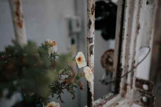 tel-aviv-sehenswuerdigkeiten-94