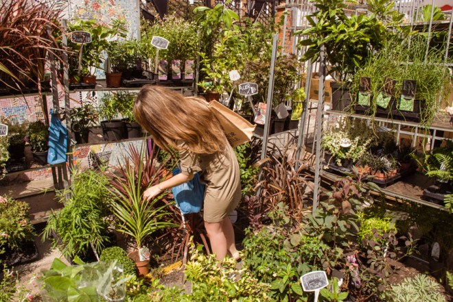 Buying plants at Columbia Road Flower Market