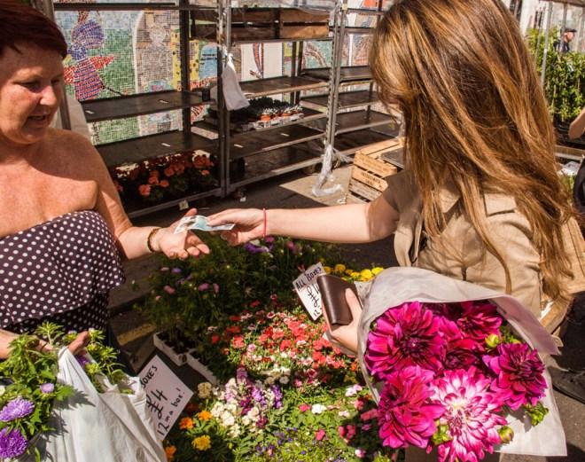 Columbia Road Flower Market Cosmos