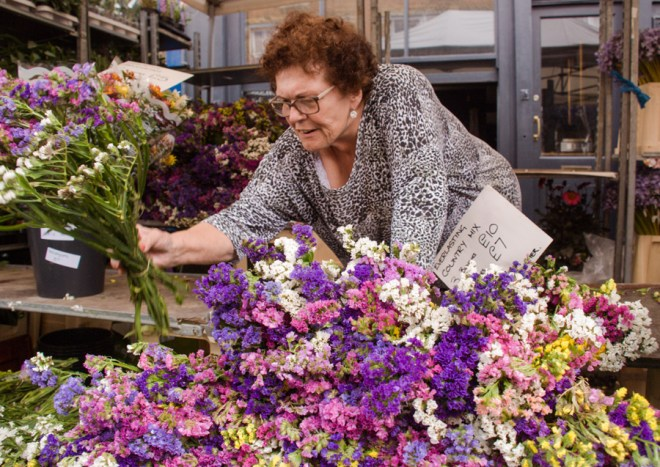 Columbia Road Flower Market traders - Everlasting country mix