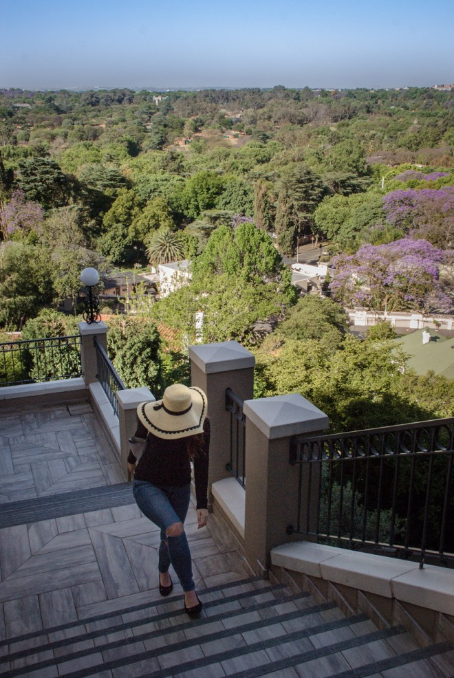 Four Seasons The Westcliff Johannesburg view, Jacaranda Trees