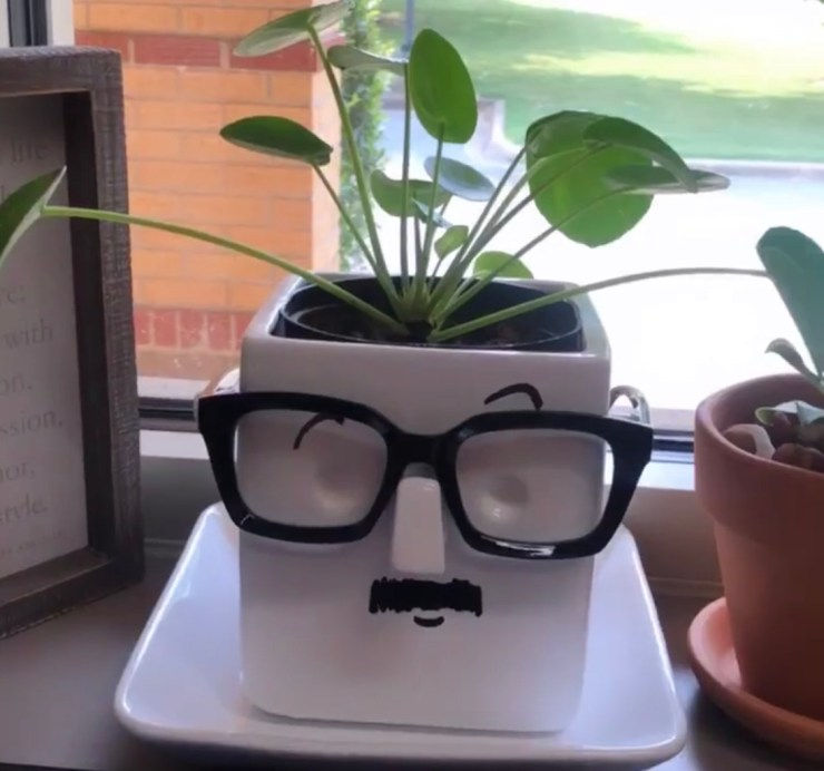 Shopping Guide: Whimsical Face Planter