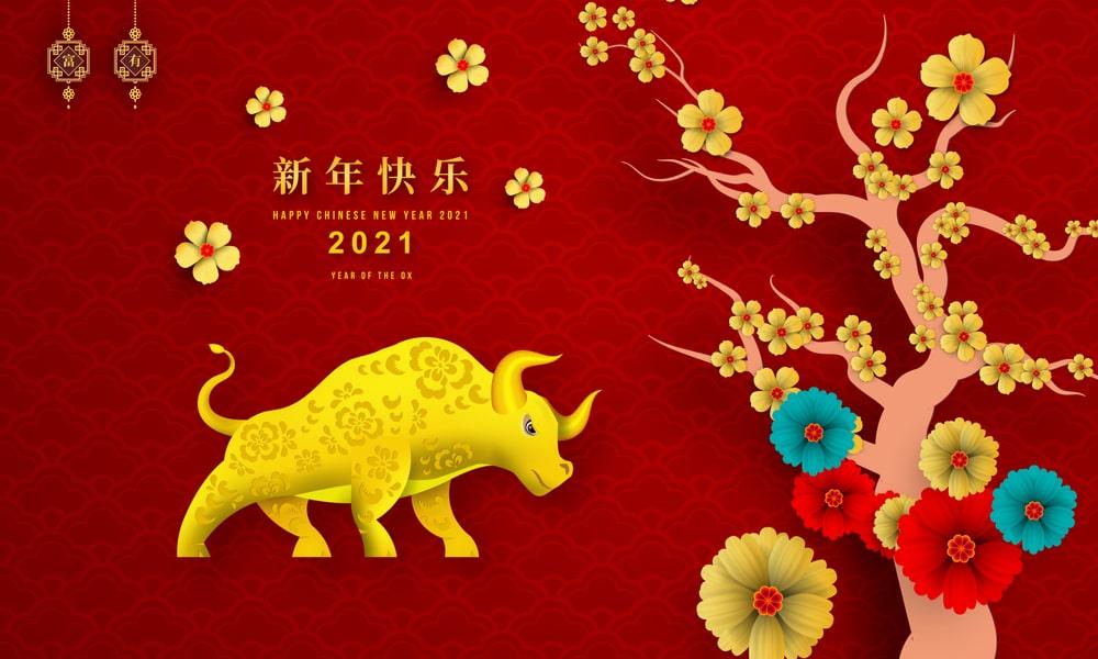 2021 happy year of bull
