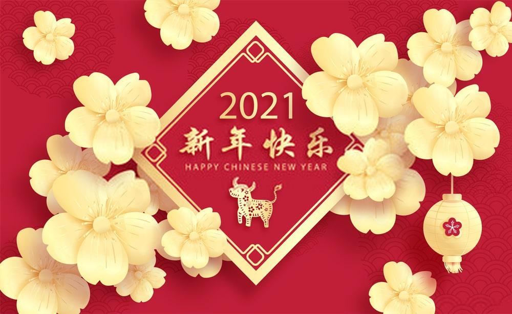 year of bull 2021