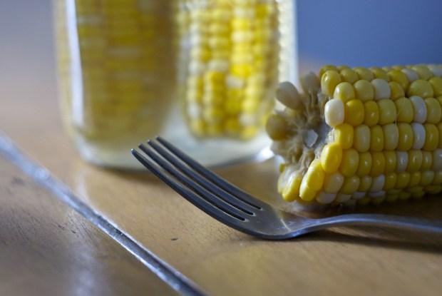 corn fork happy