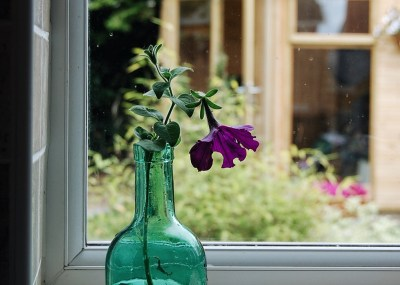 Vase on a window