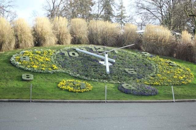 Flower clock Geneva