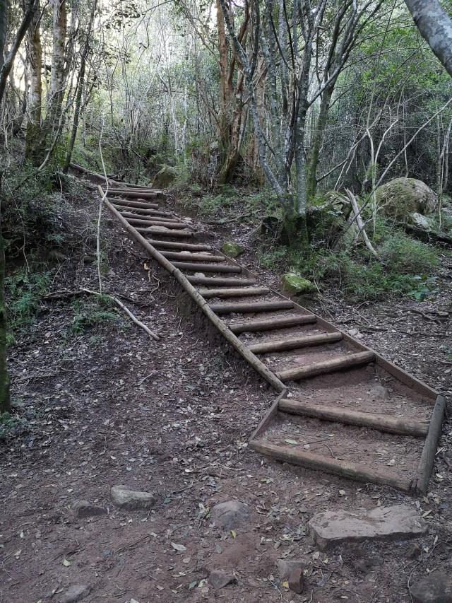 Cecilia Waterfall Hike