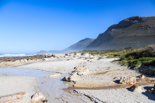 Veld and Sea Coastal Foraging