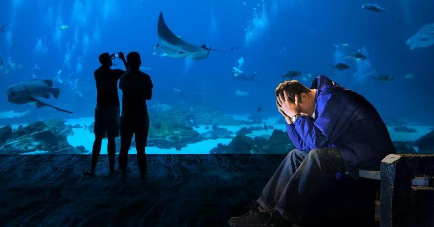 Lewis enjoying his cheap day at the aquarium.