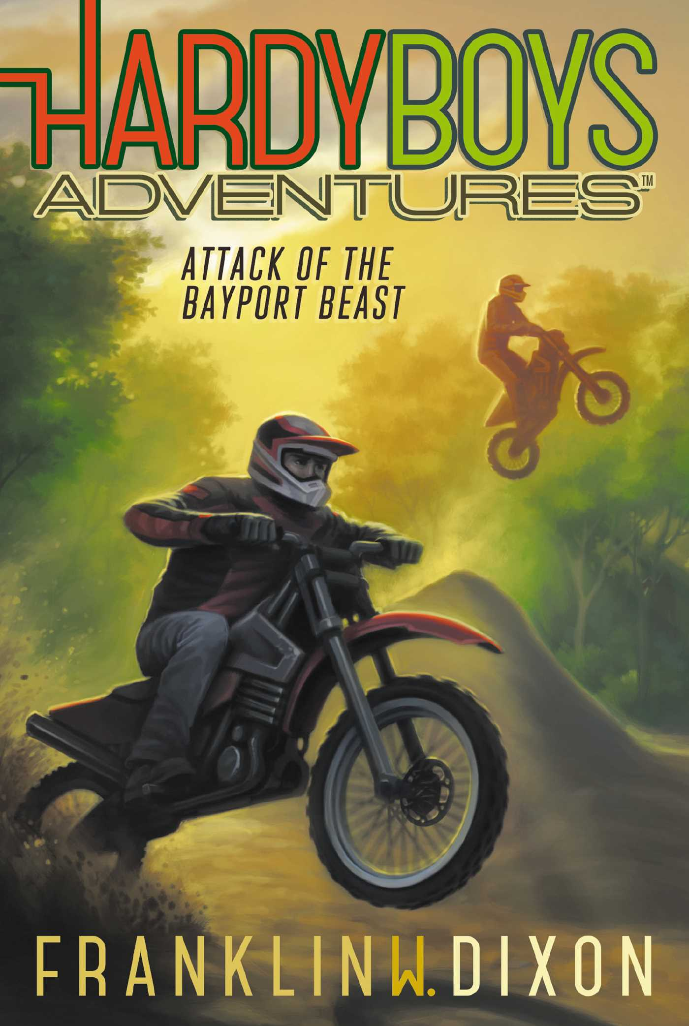 Poll ~ Hardy Boys Adventures #14 Attack of the Bayport Beast