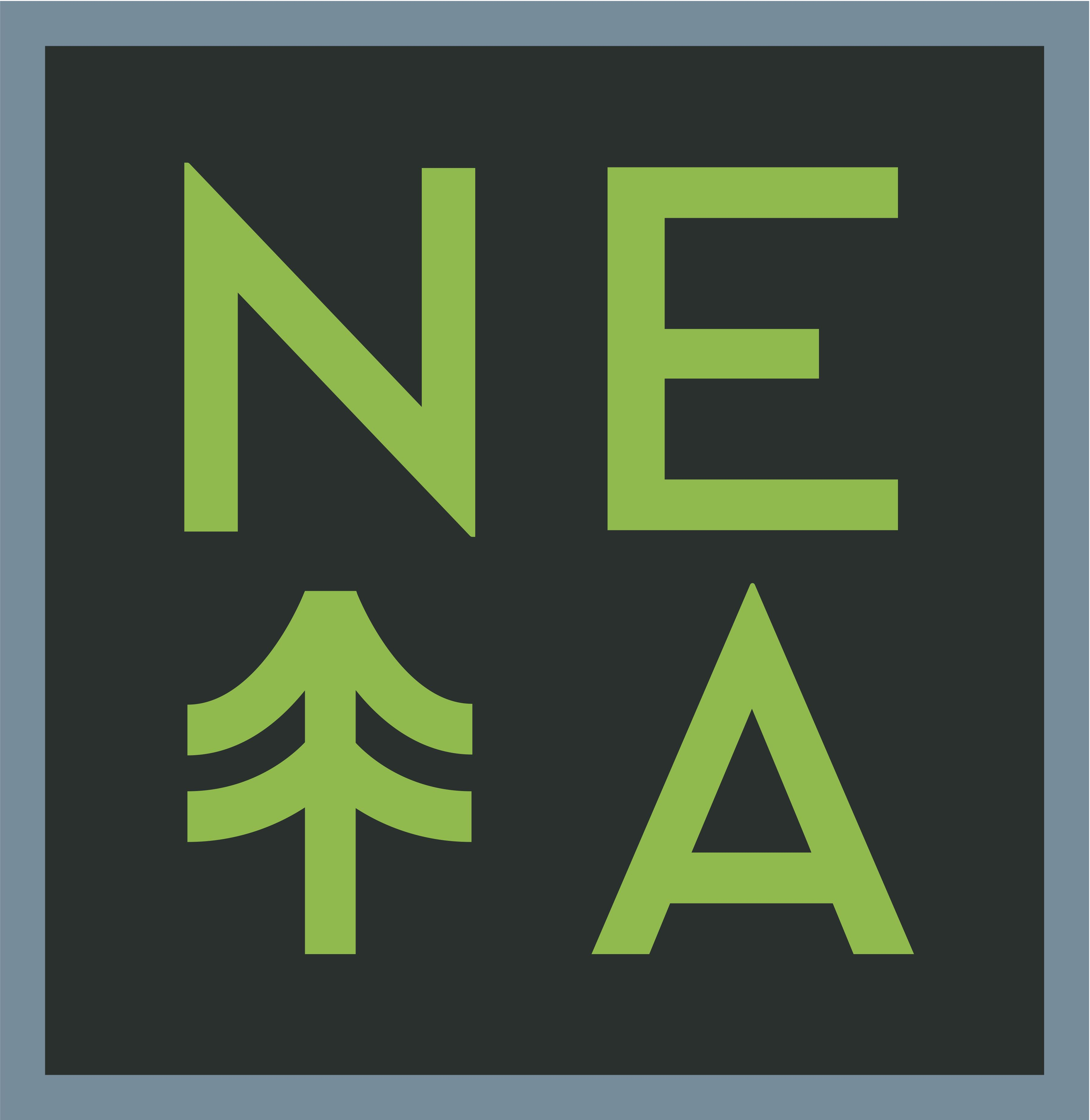 New England Treatment Access, Inc. (NETA)