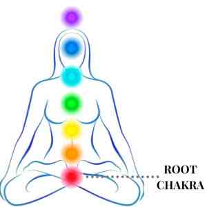 illustration of root chakra within the chakra system