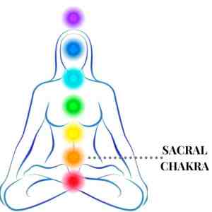 illustration of sacral chakra within chakra system