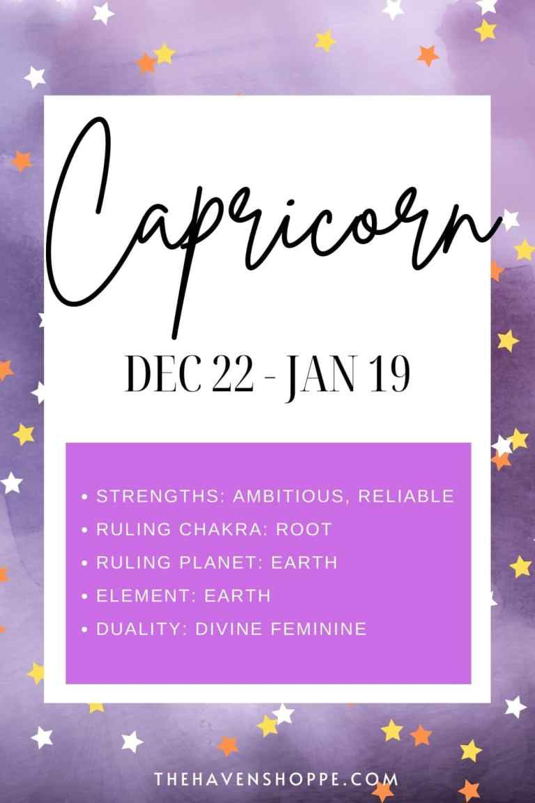 capricorn zodiac sign meaning pin