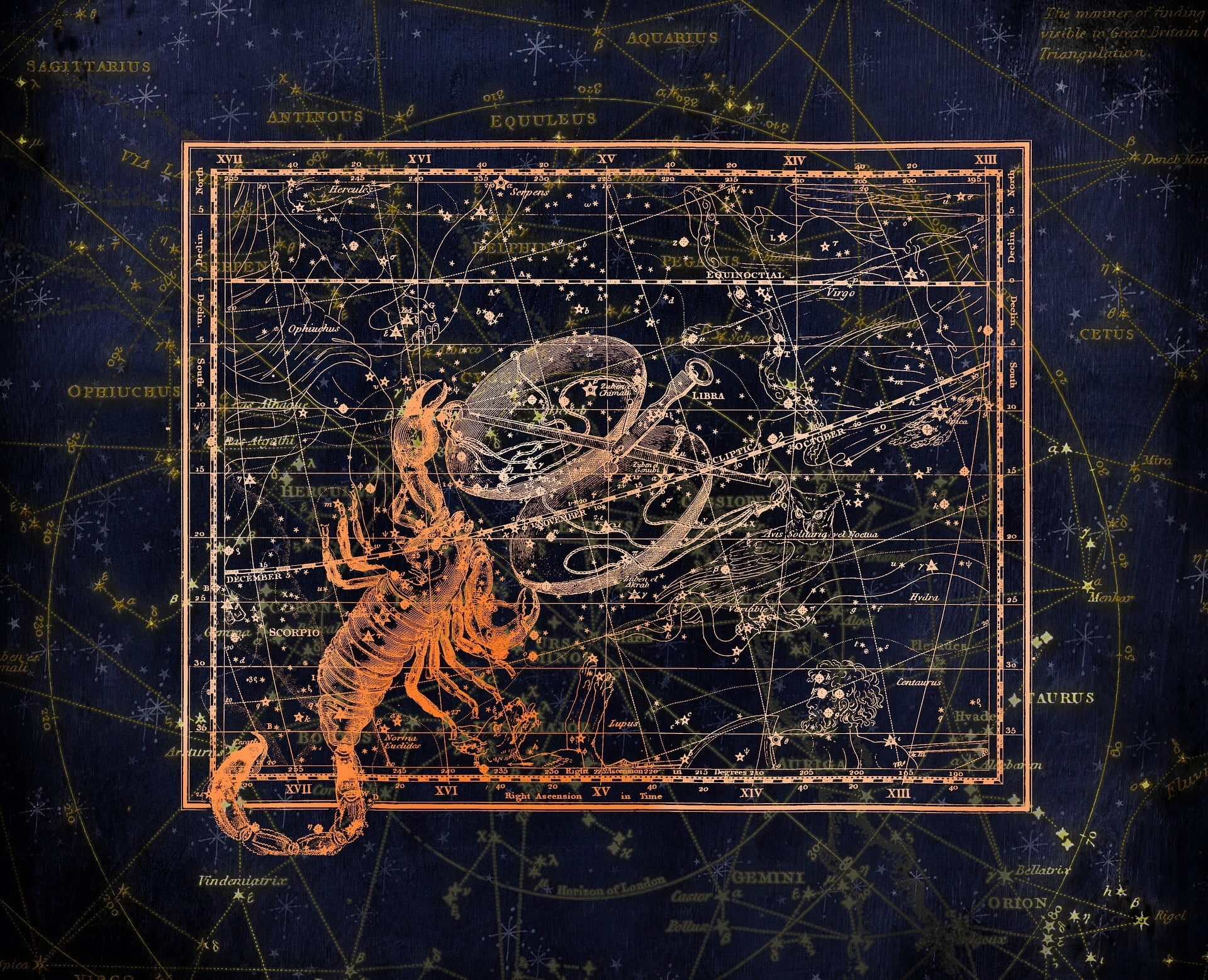 scorpion in front of the night sky with stars that make up the scorpio constellation