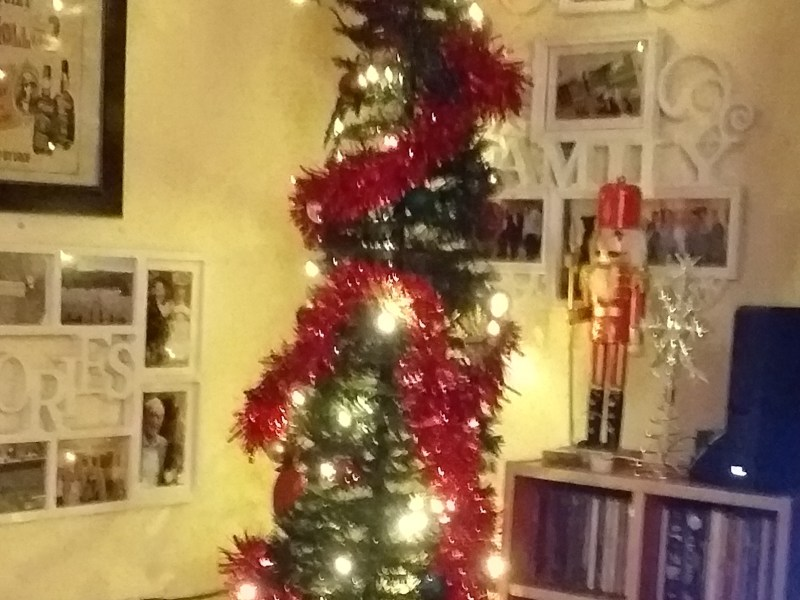 this is my tree