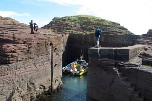 Seacliff harbour (2)