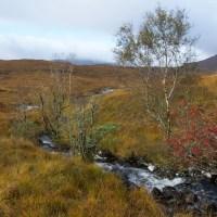Autumn in Glen Garry