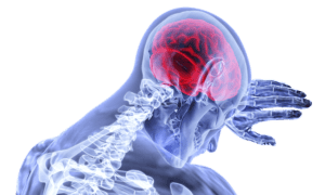Human skeleton leaning forward in pain.