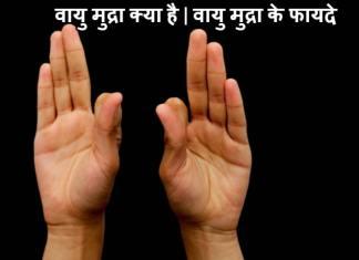 वायु मुद्रा क्या है | वायु मुद्रा के फायदे | How To Use Vayu Mudra In Hindi
